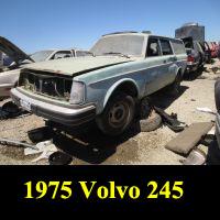 Junkyard 1975 Volvo 245 DL
