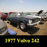 Junkyard 1977 Volvo 242