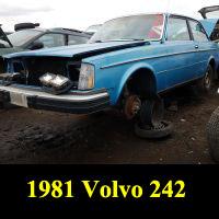 Junkyard 1981 Volvo 240 Coupe