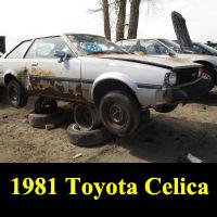 Junkyard 1981 Toyota Corolla