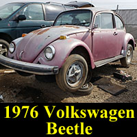 Junkyard 1976 VW Bug